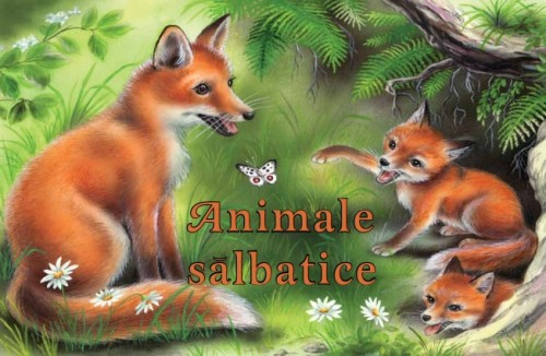animale-salbatice-pliant-cartonat