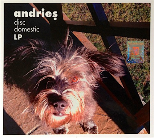 alexandru-andries-disc-domestic