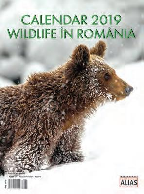 calendar-wildlife-in-romania-2019-12-file